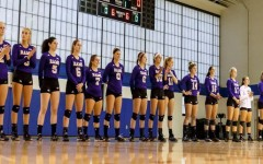 Volleyball falls in PSAC quarterfinals